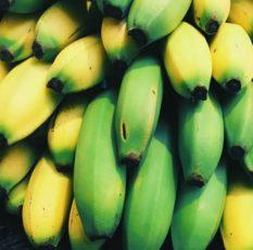 Gi-Tagged-nanjangud-Banana
