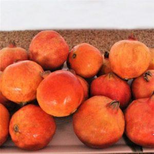 Gi-Taggged-Solapur-Pomegranate