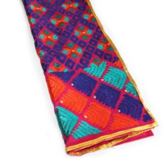 pretty pulkari kids dupatta