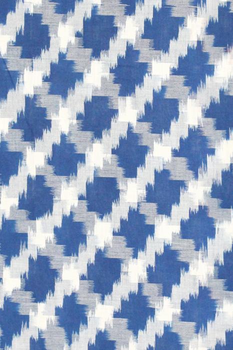 Pochampally Double Ikat Hand Woven Pure Cotton Saree (4)