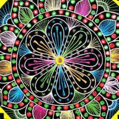 Pipli Applique Work Flower Design Wall Hanging 2