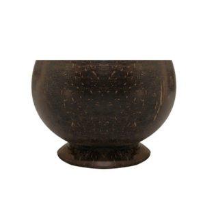 Coconut Soup Bowl (1)
