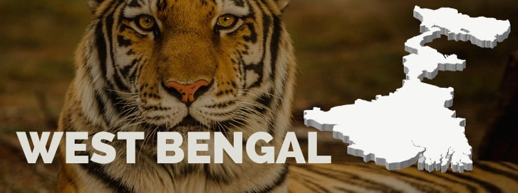 gi-tagged-west-bengal-state-banner