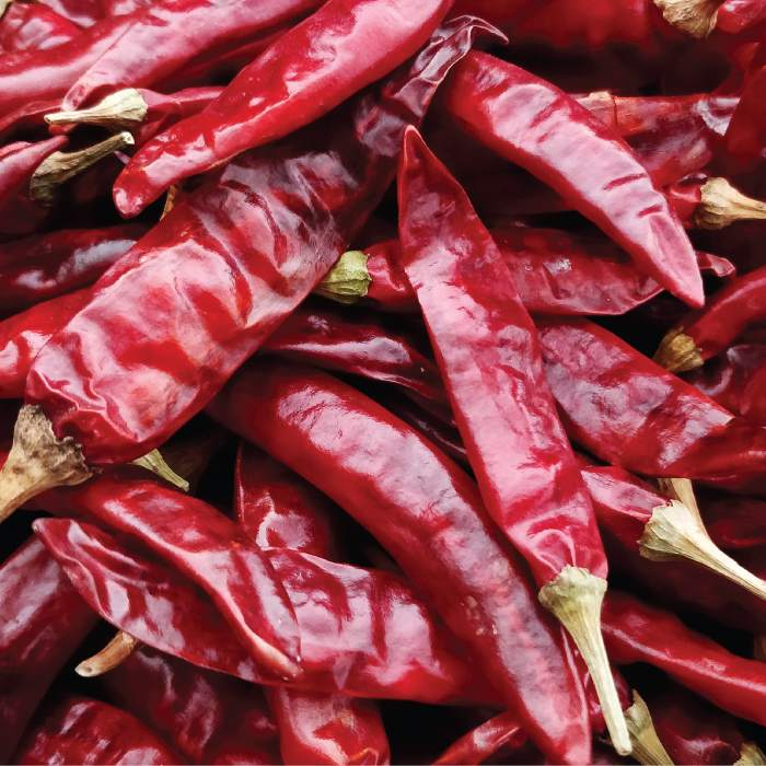 Gi-Tagged-Guntur-sannam-chilli-whole-Bulk