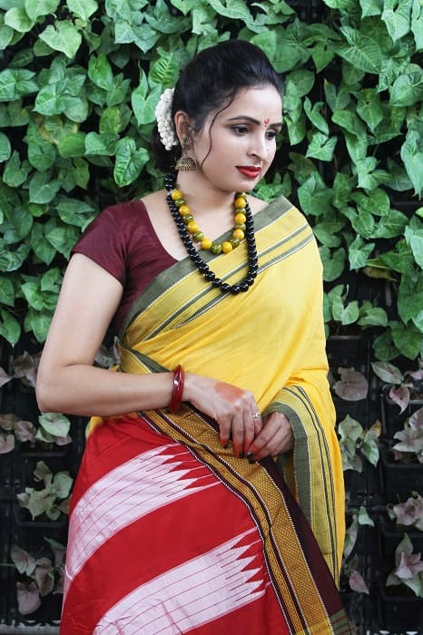 Ilkal Yellow with Fren Shade Border Cotton Saree 4