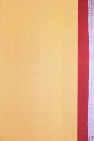 Traditional Ilkal Cotton-Silk Saree 2