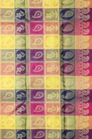 Kancheepuram Silk Saree - Geographical Indications (2)